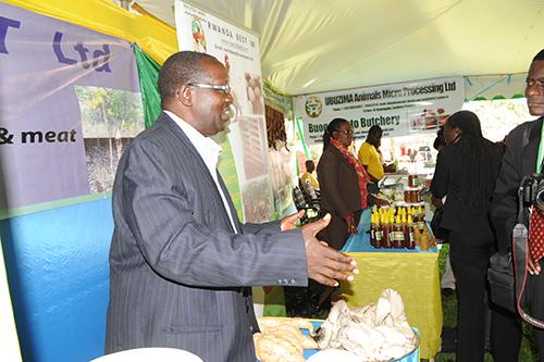 Exhibition at Serena