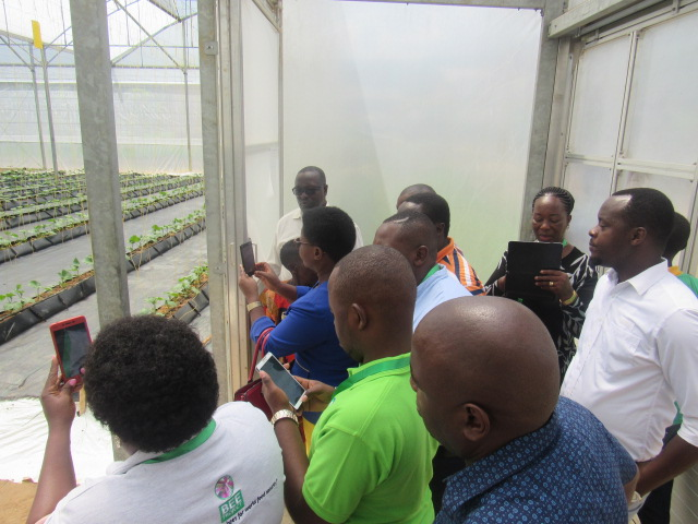 AAA members were also explained the greenhouse operations